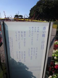 yamashita5