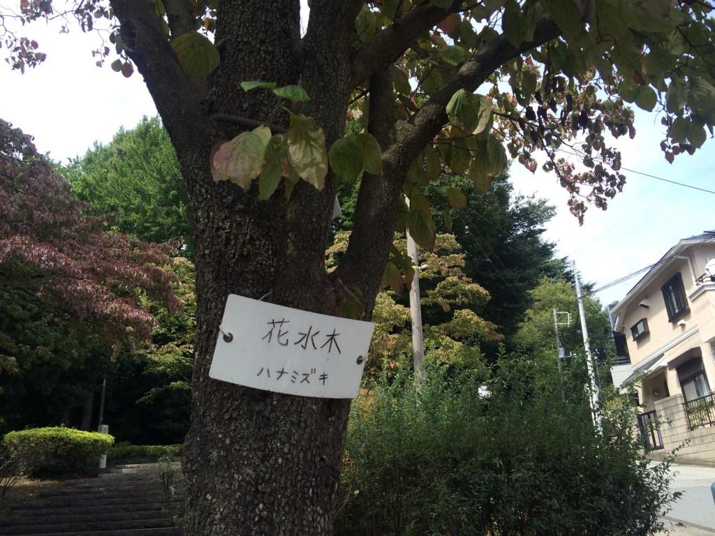 013_hanamizukis