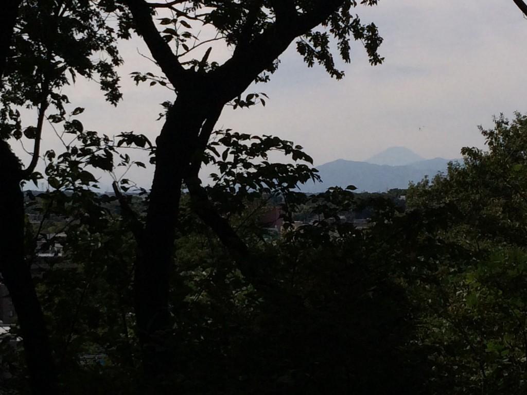 025_fujisans