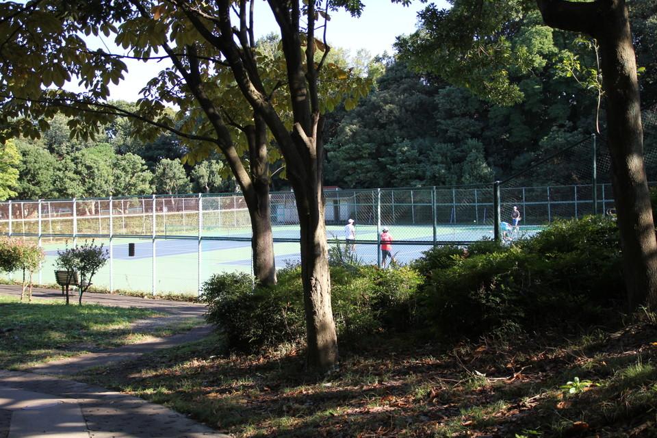 026_tenniss