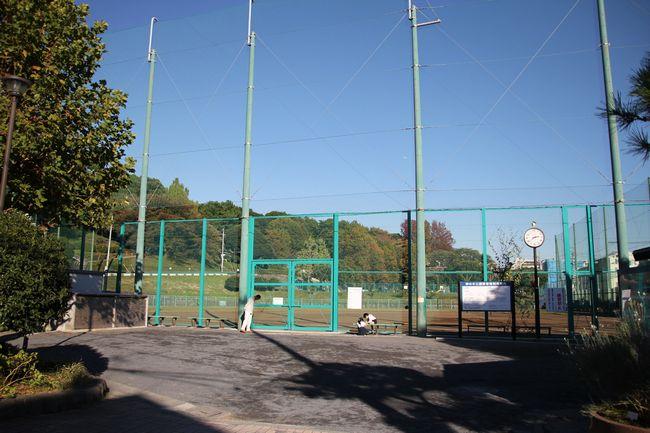 019_baseball