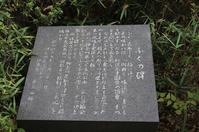 052_fugu2