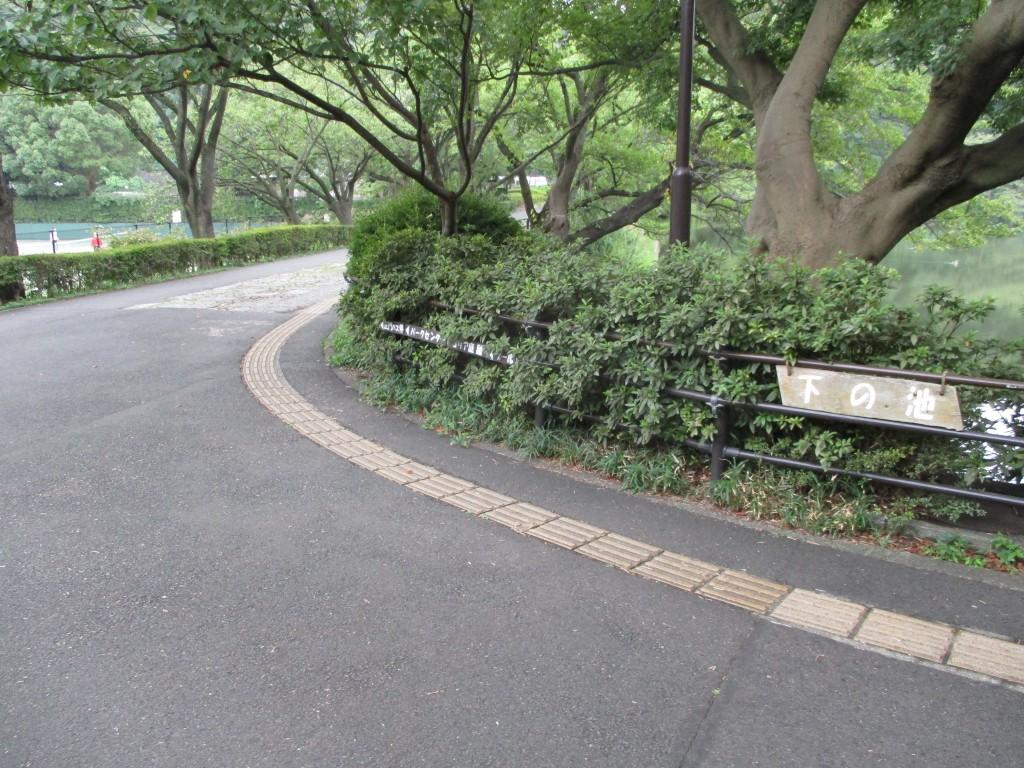 公園全体の外周が舗装された道 ...