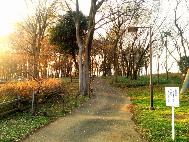 022_walking2