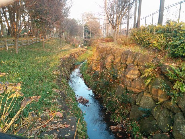 023_river