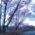 002_yokohama