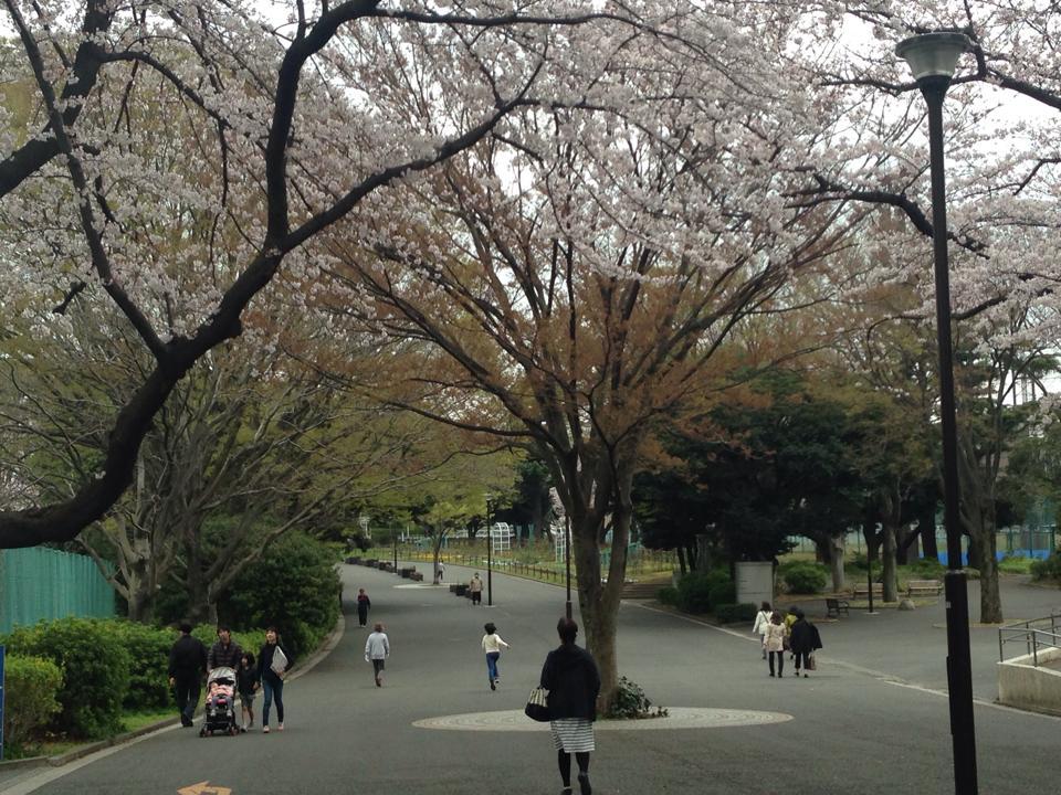 004mitsuzawa