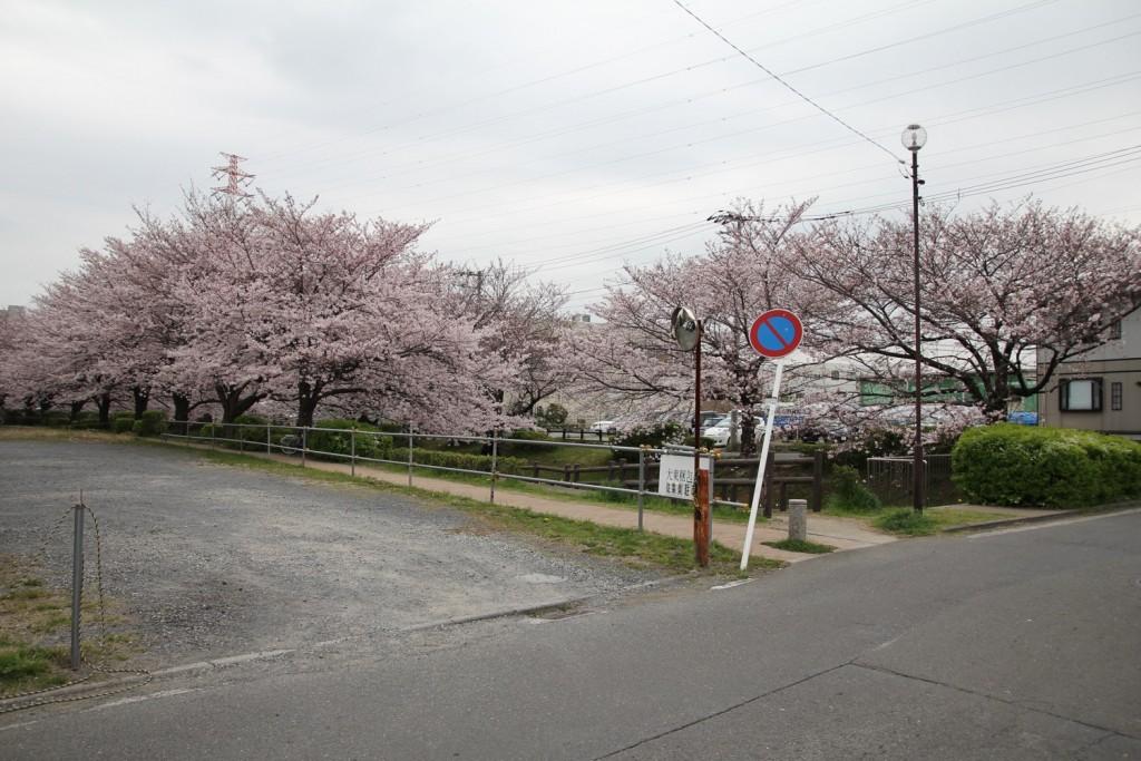 008_shori