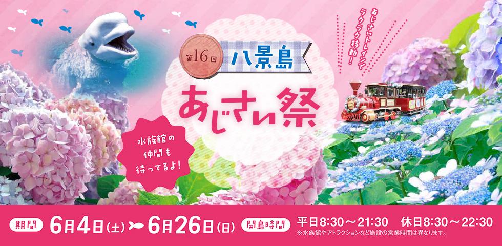 003_ajisaimatsuri