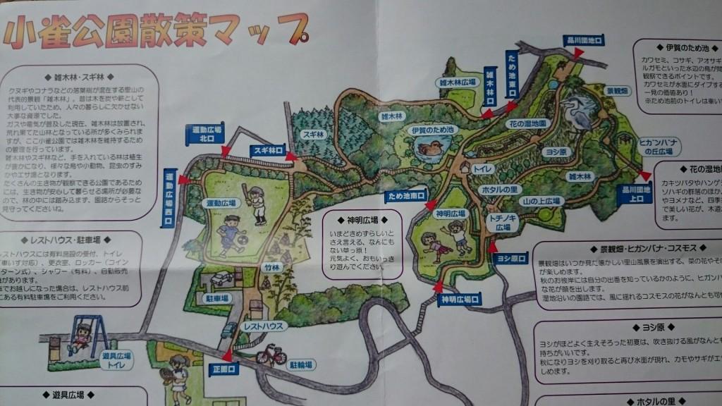 kosuzume14