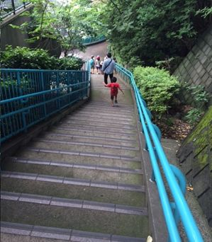 階段野毛山