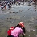 海の公園:はじめての潮干狩りのコツ! 駐車場の裏ワザ教えちゃいます [ママレポ]