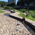 いずみ中央 和泉川・地蔵原の水辺:駅前で水遊び!?お買い物も超便利。意外な穴場