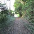 """舞岡公園:本気の登山道がブルーライン駅から徒歩15分。目指すは""""横浜1""""のアイスクリーム。この公園は横浜で最高難易度 [横浜市戸塚区]"""