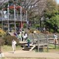 """岸根公園:駅直結&広い芝生で横浜NO.1、大きな""""忍者""""遊具のある公園 [港北区]"""