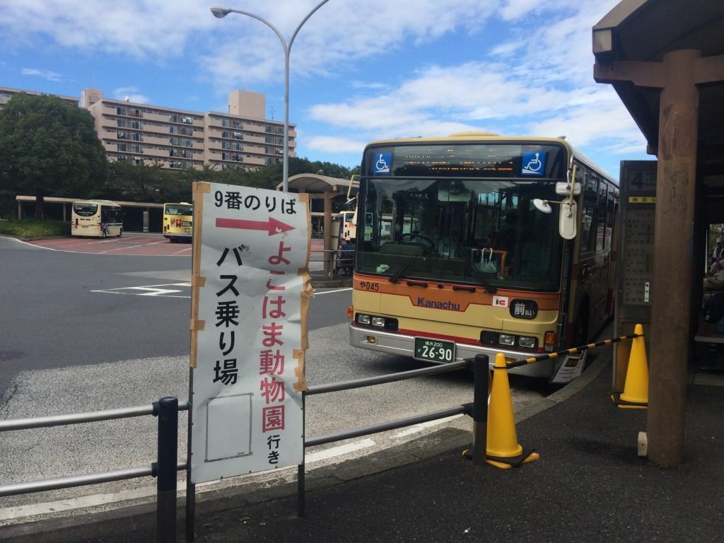 007_buss