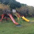 谷矢部池公園:珍しいダブルすべり台で競争。ブルーライン「踊場」駅から徒歩圏の大きな池のある公園 [戸塚区]