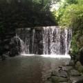 「白糸の滝」がある白根公園。住宅街すぐに子供と気軽に楽しめる自然 [白根公園:旭区]