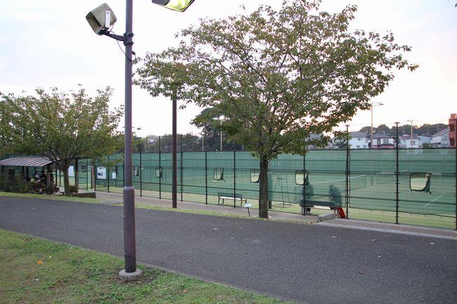013_tennis