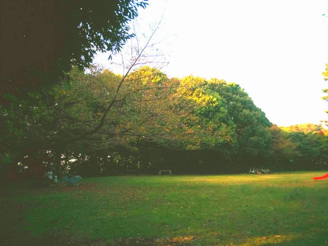 013_yuuguhiroba