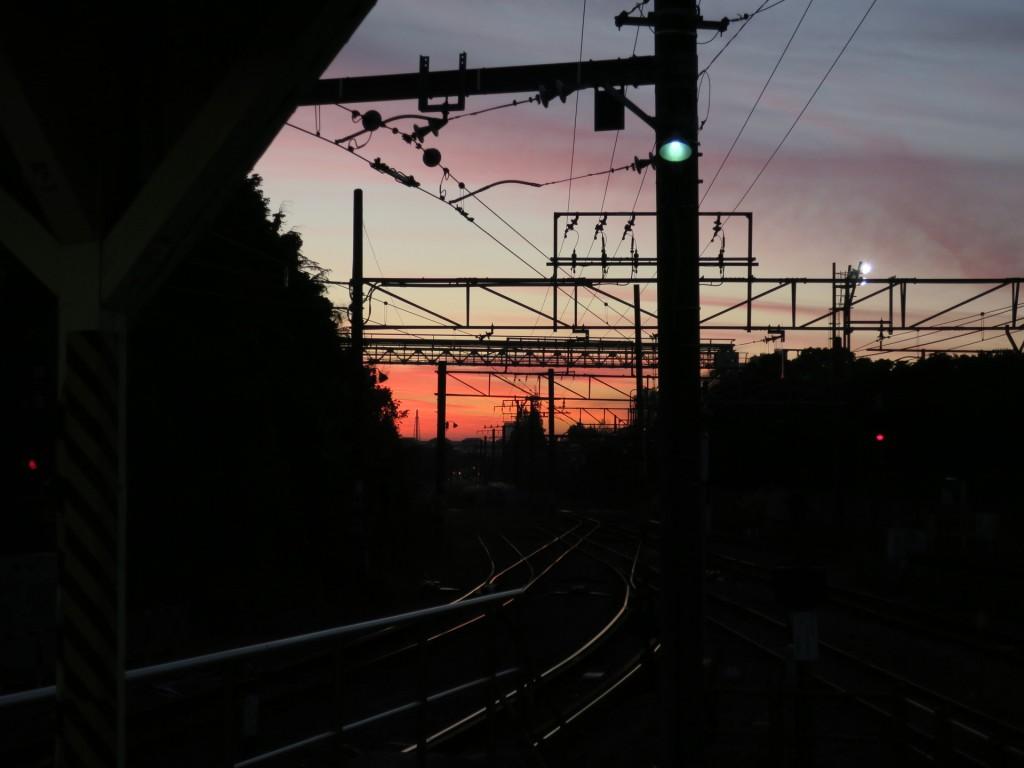 005_yuyakes