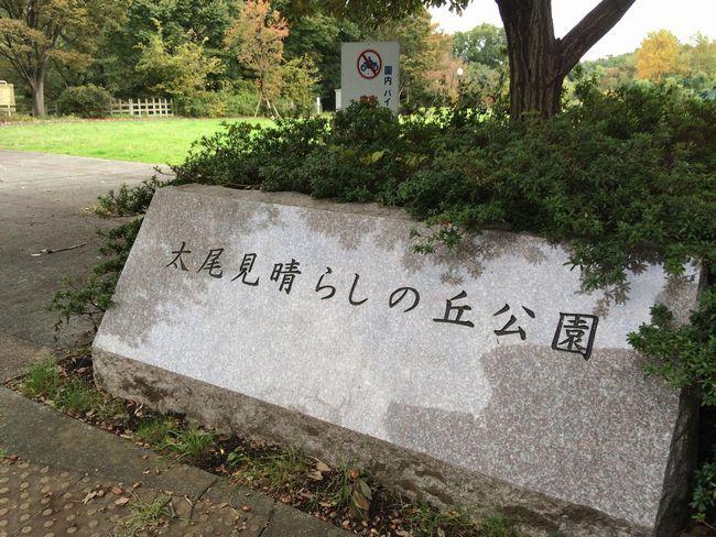 023_miharashi