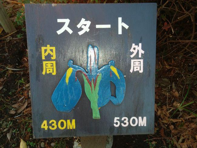 016_mejirushi
