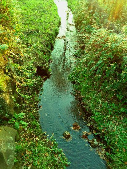 028_river2