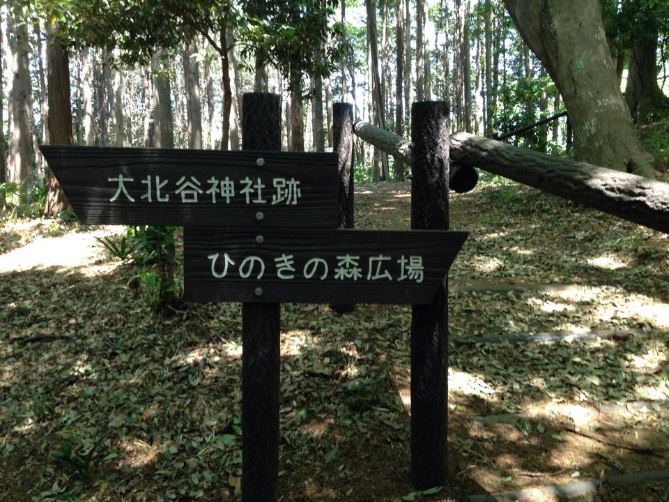 shiminnomori006
