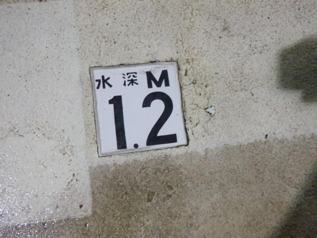 P1010297