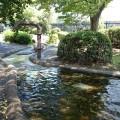 新田緑道:じゃぶじゃぶ池が有名な緑道にはかっこいい機械もいっぱい!子供と楽しめる長い緑道を発見しました。 [港北区]