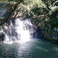 秋は子供と滝を探しに。優しい滝の音に包まれながら森散策が楽しめます。民話も残る滝つぼを探しに出かけてみませんか? [戸塚区:まさかりが淵市民の森]