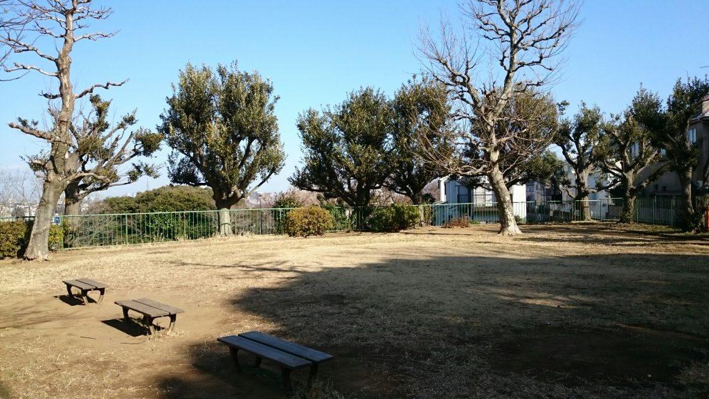okamura14
