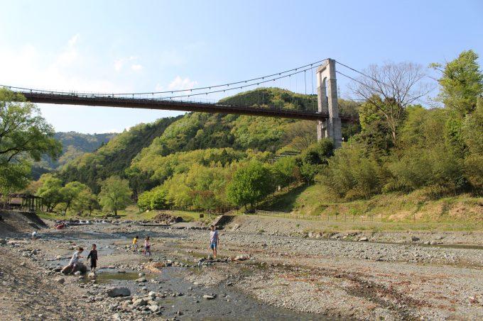県立秦野戸川公園:本物の川で川...