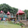 平塚市総合公園:超大型遊具に、トトロ風のくすのきと遊具がある大型公園。ららぽーとも近く1日遊べちゃいます [平塚市]