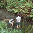 帷子川親水緑道:駅から歩いて3分なのに!?気持ちのいい森林浴とお散歩ルート。夏には水辺散策・水遊びが楽しめます。[旭区]
