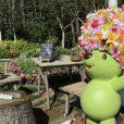 ズーラシアに隣接する「里山ガーデン」は秋のピクニックにぴったり!芝生でランチやどんぐり拾いも[旭区]