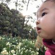 「水仙まつり」へ行ってきました。香り豊かな70万株の水仙を見て、磯で貝殻集めも![城ヶ島公園(三浦市):パパレポ]