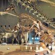生命の星・地球博物館:大迫力の恐竜!子供は無料。地球誕生の秘密に迫る探検へ!雨の日でも楽しめるスポットです [小田原市]