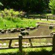 御幣公園(おんべこうえん):遊行寺近く、小さな子から小学生まで楽しめる公園。自然がいっぱいで、子供の探求心をくすぐります![藤沢市]