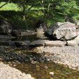 四季の森公園で水遊び!じゃぶじゃぶ池は稼働中です[緑区]