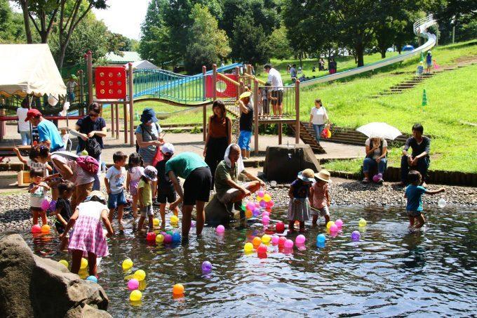 茅ケ崎里山公園で「里山夏祭り」開催! 池でじゃぶじゃぶヨーヨー釣り ...