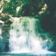 横浜の水源地「道志村」で間伐・散策体験!バスツアーで気軽にお安く貴重な学びの体験ができます[10月26日(土)開催、20日予約〆切]