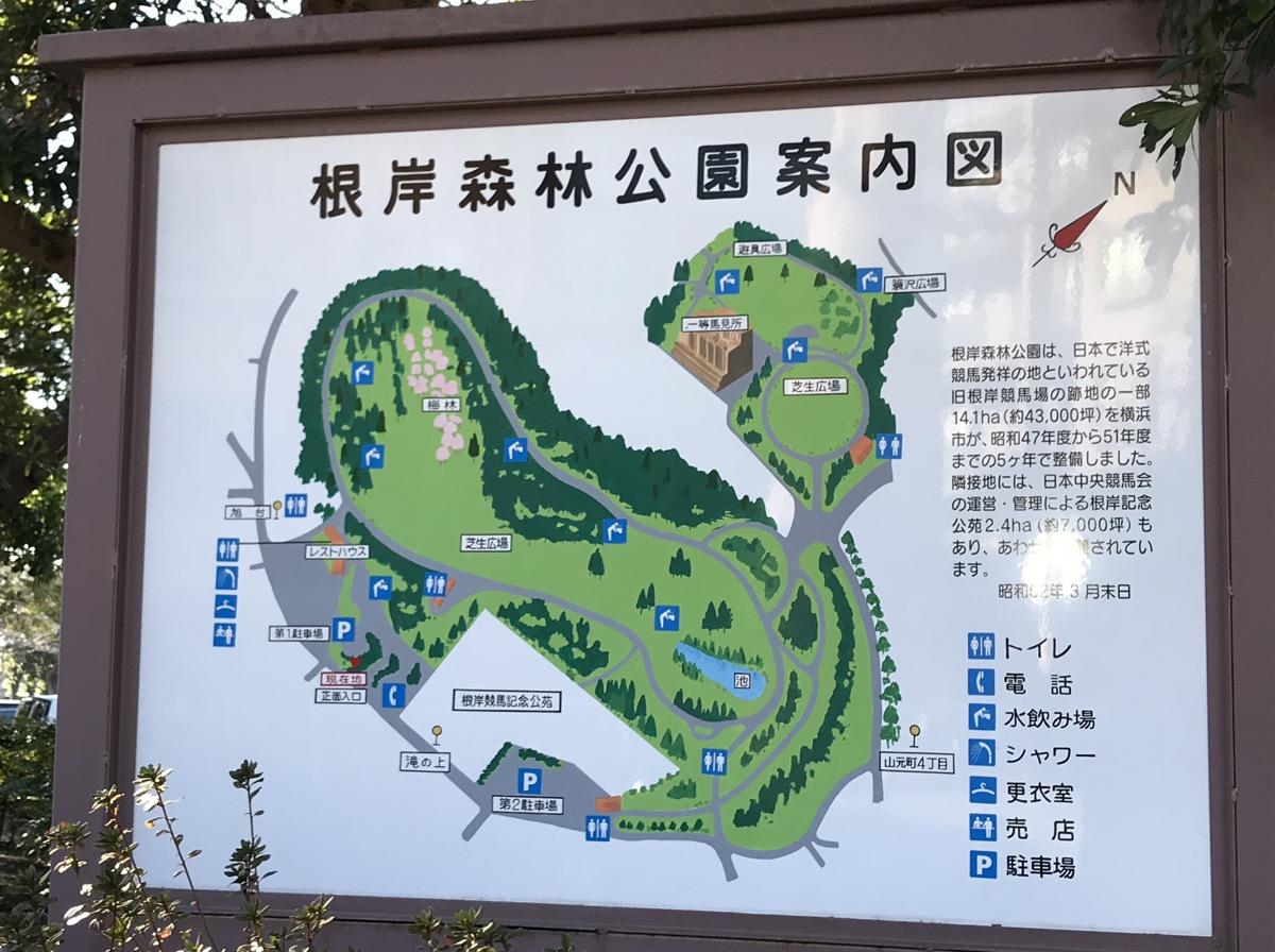 根岸 森林 公園