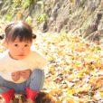 2020年10月31日-11月1日・3日(文化の日)のイベント 予約不要の子供向け[横浜市内]