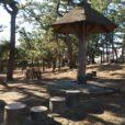 平和町公園:広~い松林の中に遊具もあります。松ぼっくり拾いやかくれんぼも楽しそう!! 近くにスーパーがあり、買い物の行き帰りにちょっと寄るのに最適です。[茅ヶ崎市・平和町]