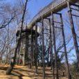 あつぎこどもの森公園:丘の上から落ちる超ロングすべり台、日本一長い空中回廊、リスやムササビの気分になれる!?個性派アスレチック…ワクワクが止まらない!大自然いっぱいの公園です[神奈川県厚木市]